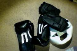 sparring gloves and headgear