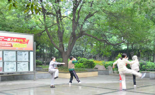 Chinese practicing tai chi in local park