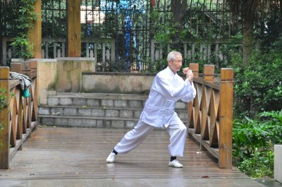 Taiji master on bridge