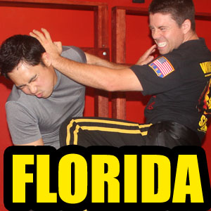 Wing Chun school lakeland florida